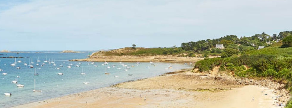 Plage-CoupdecoeurAL.jpeg
