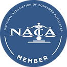 NACA_badge_medium_blue.png