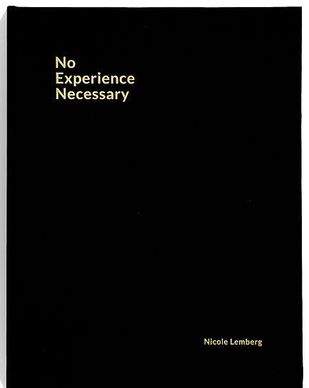No Experience Necessary 1.jpg