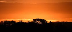 sunrise over Abberley