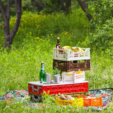 Picnic/Outdoor