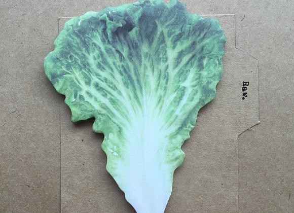 sandwich series: lettuce