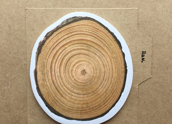 Tree Trunk Post It: annual rings
