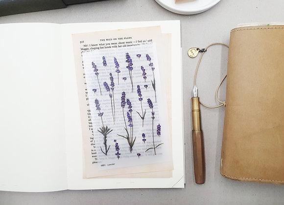 Appree: Lavender