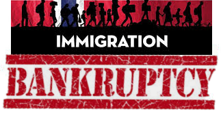 Bankruptcy or Immigration Consult