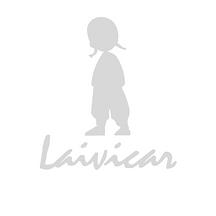laivicar_perfil02-cópia.png