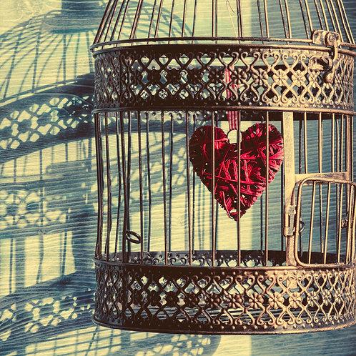 Heart-Wall Package 2x60min.