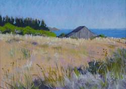 Sea Ranch Headlands