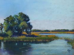 Golden Marsh Grass 9x12