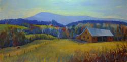 Fields of Winter Wheat