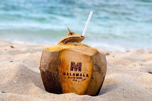 Malamala Beach Club's famous coconuts