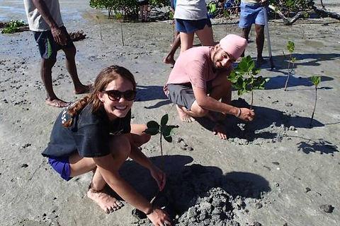 Replenishing Mangroves in Fiji's Yasawa Islands