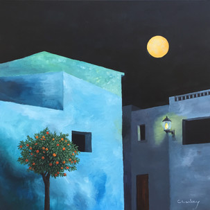 Orange tree and the night