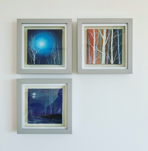 Framed Original Paintings