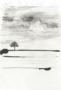 Monotone Landscape