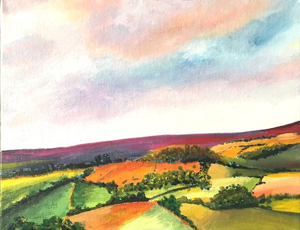 Autumnal fields