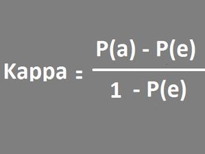 R-What is Kappa coefficient?
