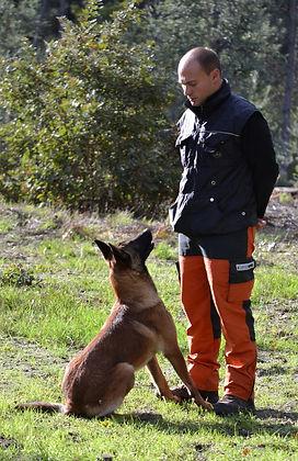formation-détection-canine.JPG