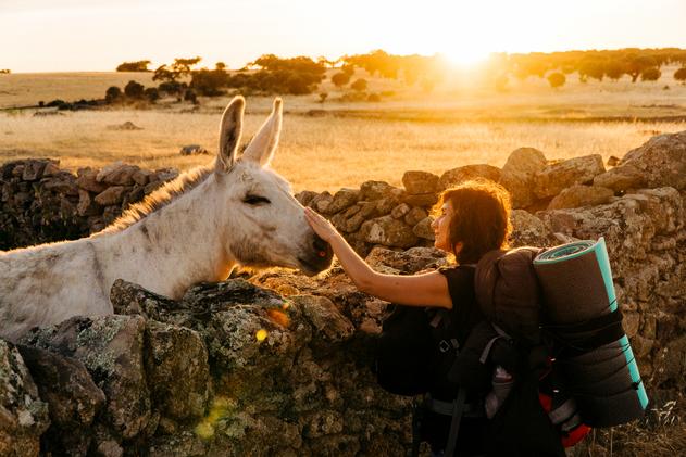 Viaje en el mundo rural