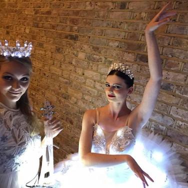 LED Swan Lake Show