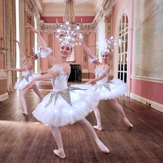 norrington_adams_ballet_company41.jpg