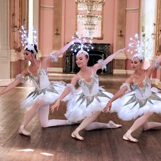 norrington_adams_ballet_company42.jpg