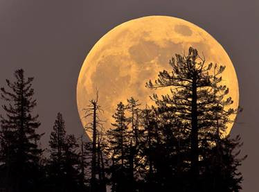 WHAT YOU MISSED DURING THE SPECIAL SUPER MOON IN LIBRA