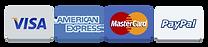 titsup visa mastercard paypal american express