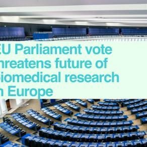EU Parliament vote concerns