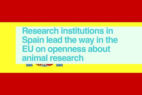 Spain - EARA Study of EU-based websites 2020