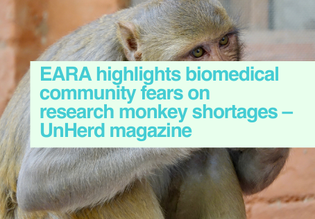 Fears rise on China research monkey export ban - UnHerd magazine