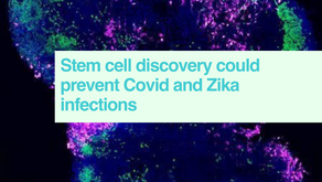 Stem cells & Covid and Zika infections