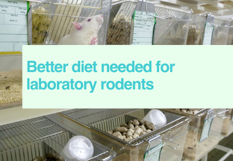 Updated diet for lab rodents
