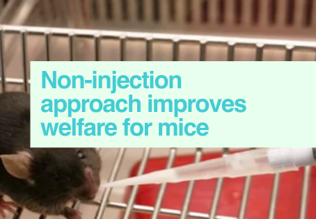 Improving mouse welfare