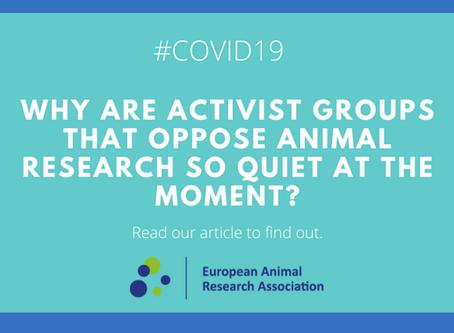 Coronavirus: Activist groups keep silent on animal research