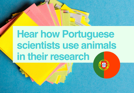 Scientists in Portugal talk about their research using animals