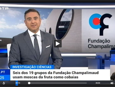 Fruit fly research on prime time TV in Portugal