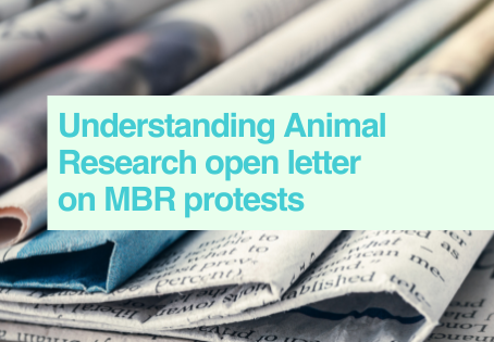 UAR response to MBR protests