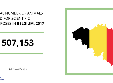 Research sector in Belgium welcomes EU-wide figures on the number of animals used in science
