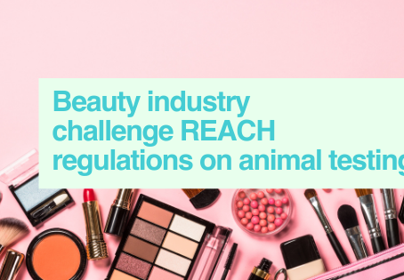 Beauty companies letter on ECHA ruling