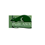 PolLASA_website.png