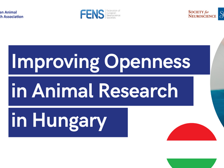 Improving transparency around animal research - Hungary event