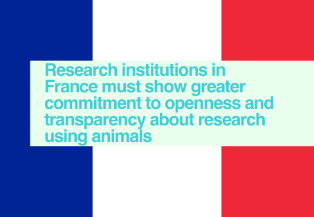 France - EARA Study of EU-based websites 2020