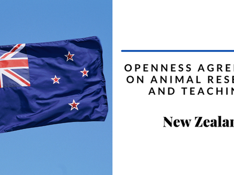 Openness agreement in New Zealand