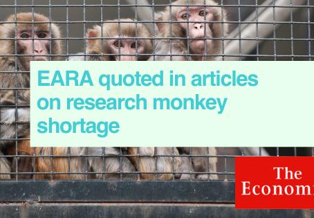 The Economist on monkeys in neuroscience research