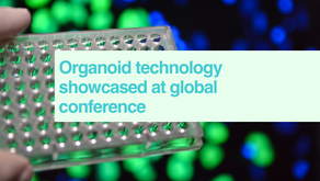Organoids at global event