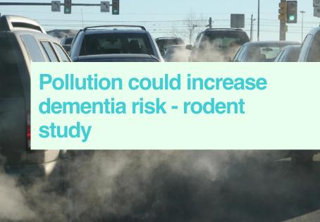 Pollution & dementia
