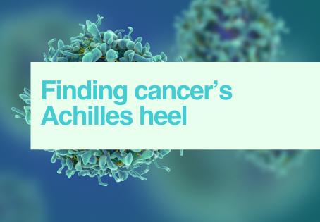 Targeting cancer cells