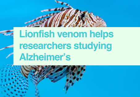 Lionfish venom for Alzheimer's study