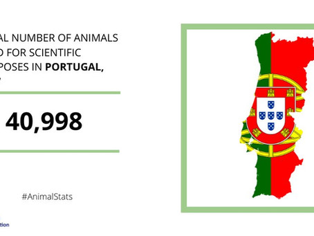 Research sector in Portugal welcomes  EU-wide figures on the number of animals used in science